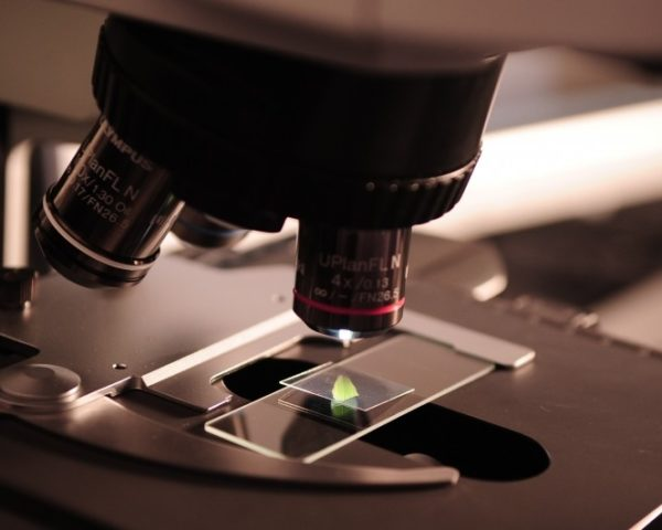 microscope-research-lab-laboratory-science
